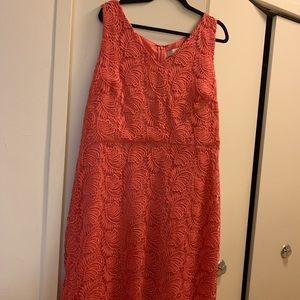 Coral Lace Dress (LOFT) Size 18 NEW